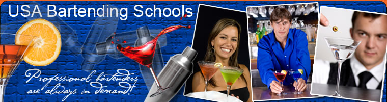 USA Bartending School Website